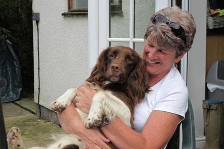 Dog Help - Dougie 2